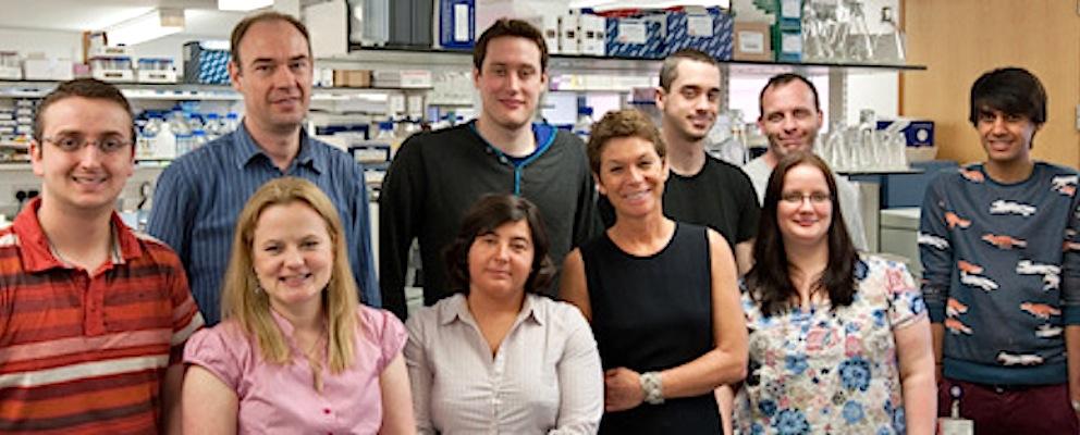 A professora Giovanna Mallucci e o seu grupo (foto: divulgação / MRC Toxicology Unit)