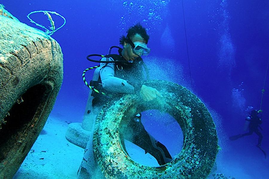 foto: Vimeo / Red Sea Research