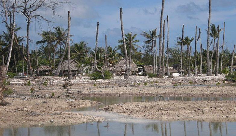 Impacto da erosão da costa de Kiribati e seca nos coqueiros de Tarawa