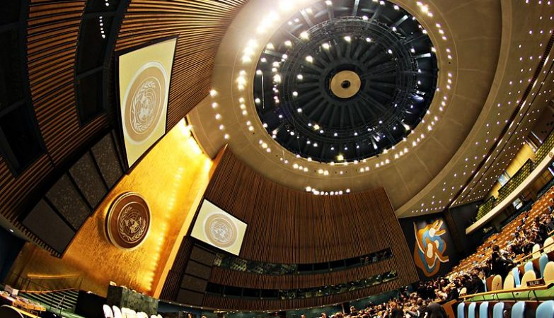 Assembleia Geral das Nações Unidas