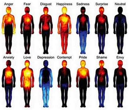 Mapa corporal das emoções, da esquerda para a direita e de cima para baixo: raiva, medo, nojo, felicidade, tristeza, surpresa, neutro, ansiedade, amor, depressão, desprezo, orgulho, vergonha e inveja