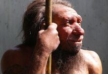 O Homem do Neandertal