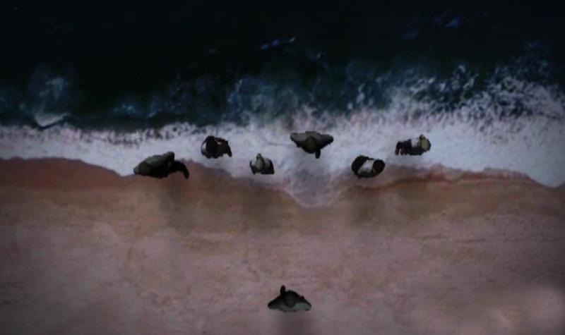 Simulação RTP do jogo de praxe da praia do Meco