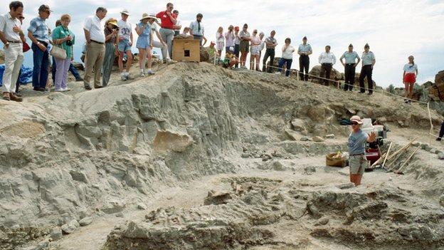 O T-Rex Wankel foi escavado há um quarto de século no Montana por Kathy Wankel