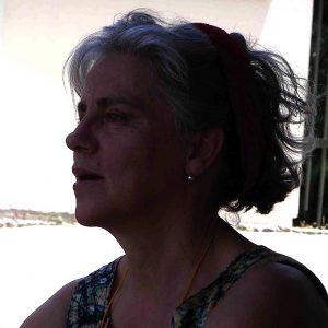 Maria João Berhan da Costa, da organização do ncontro Nacional de Cientistas em Portugal