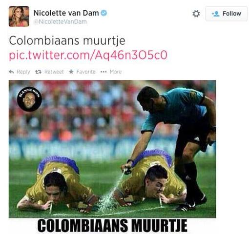 """Barreira Colombiana"" segundo Nicolette Van Dam"
