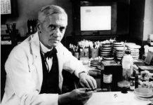 A invenção da penincilina or Alexander Fleming é considerada o maior avanço da história de Medicina. Esse avanço está em risco.