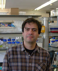 O investigator  João Taborda Barata, da Faculdade de Medicina de Lisboa