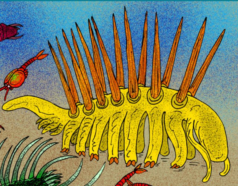Representação do artista Stanton F. Fink da Hallucigenia sparsa