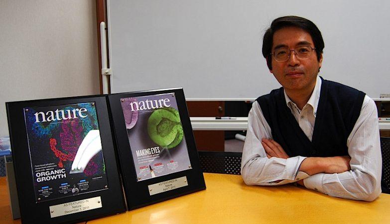 Yoshiki Sasai, 52 anos, cientista responsável por estudos pioneiros em células estaminais