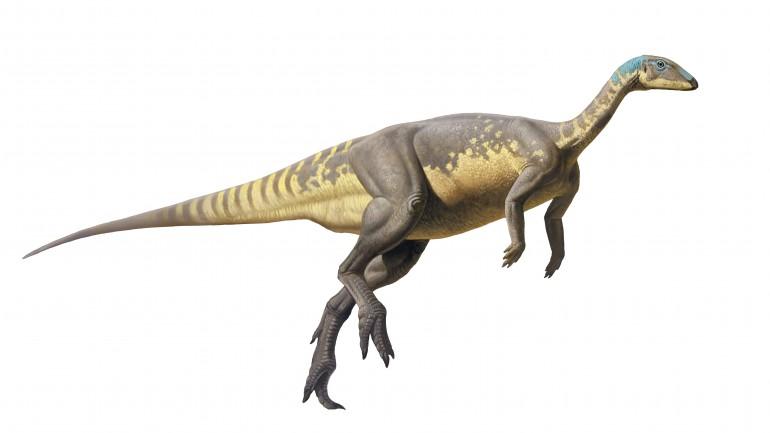 Reconstituição do Eousdryosaurus nanohallucis, que existiu no período do Jurássico Superior