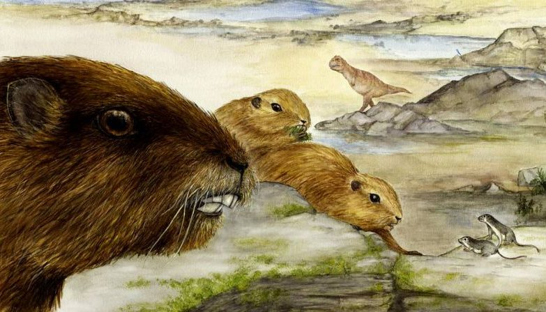 Vintana sertichi, o mamífero de Gondwana