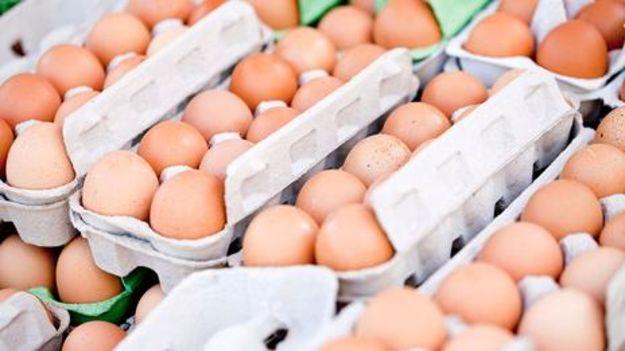 Portugal garante não ter ovos contaminados