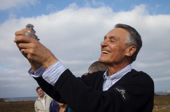 Em visita à Selvagem Pequena, o presidente Cavaco Silva anilha uma cagarra (ou pardela-de-bico-amarelo)