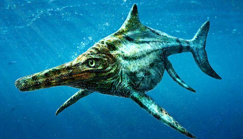 Conceito artístico do parente de ictiossauro descoberto na Escócia
