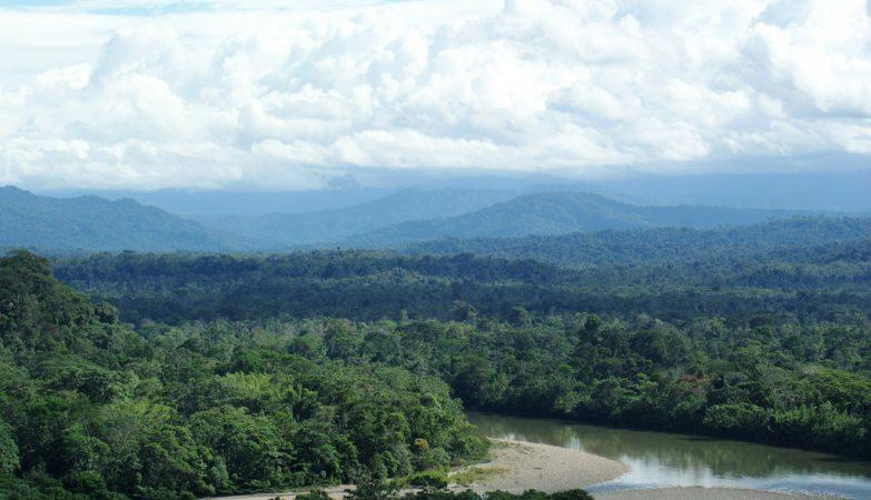 Desmatamento na Amazónia