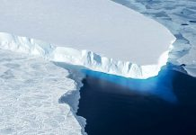 Placa de gelo na Antártica