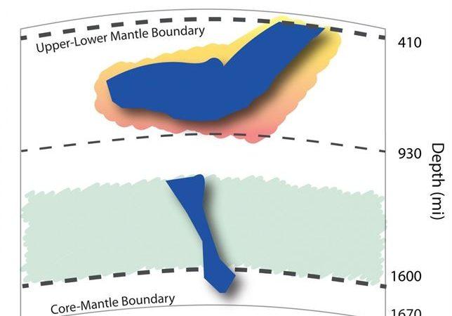 Imagem simplificada de uma laje tectónica a afundar-se desde a camada superior do manto terrestre, até estacionar na camada super-viscosa a 1500 km de profundidade