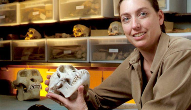 A antropóloga Jill Pruetz, da Iowa State University