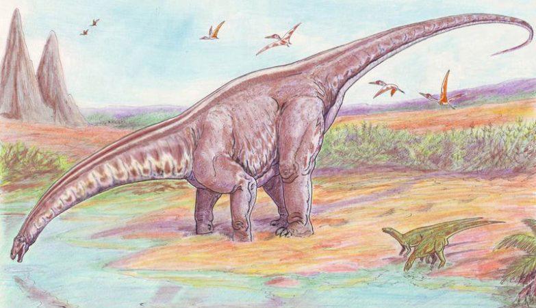 Esboço artístico de um Apatosaurus louisae