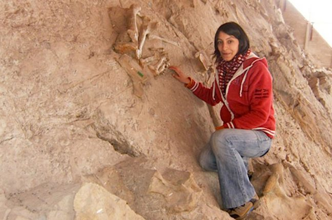 A paleontóloga Elisabete Malafaia, da Universidade de Lisboa