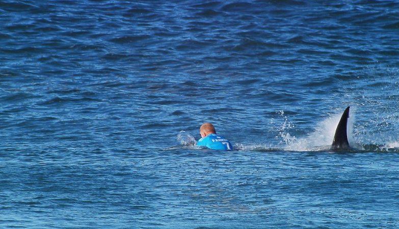 Mick Fanning atacado por tubarões na World Surf League