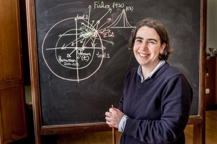 Isabel Gordo, investigadora em Biologia Evolucionária do Instituto Gulbenkian de Ciência