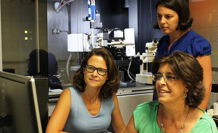 Catarina Coelho, Teresa Santos Silva e Maria João Romão, investigadoras da Faculdade de Ciências e Tecnologia da Universidade Nova de Lisboa, cristalizaram e determinaram a estrutura 3D da proteína Aldeío Oxidase (AOX) do fígado humano.