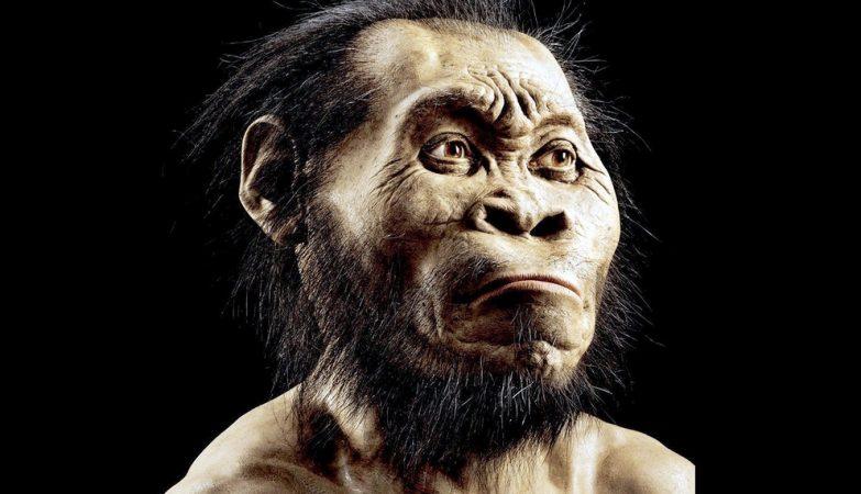 Eis o novo Homo naledi, um dos mais antigos ancestrais conhecidos do Homem