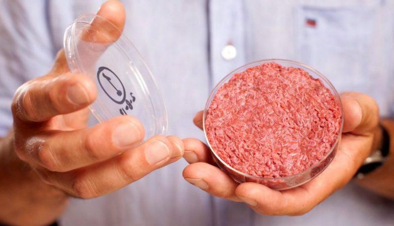 O investigador Mark Post mostra o seu hambúrguer de laboratório