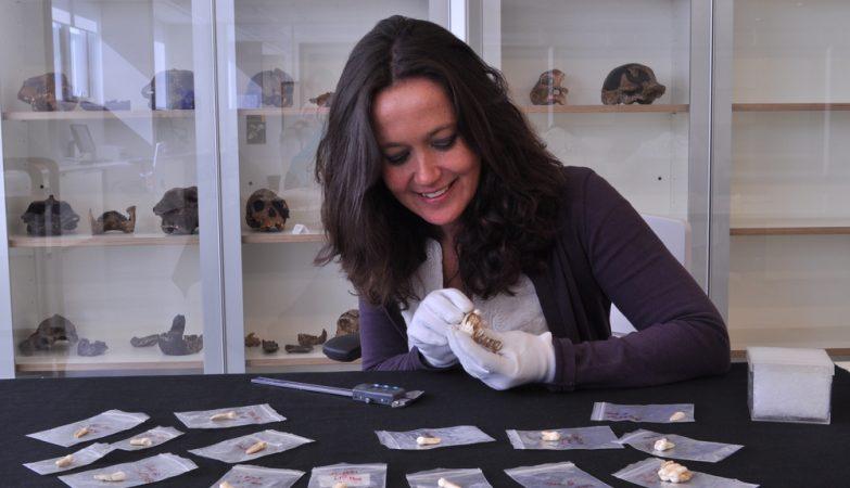 A arqueóloga María Martinón-Torres estuda os dentes encontrados em Daoxian
