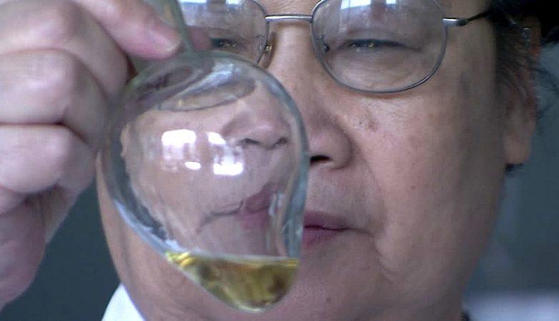 Tu Youyou, cientista galardoada com o Nobel da Medicina 2015