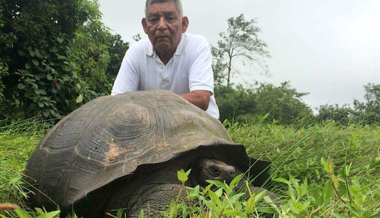 """Fausto Llerena Sánchez, antigo tratador da """"Lonesome George"""", posa com um exemplar de Chelonoidis donfaustoi, a espécie baptizada em sua homenagem"""