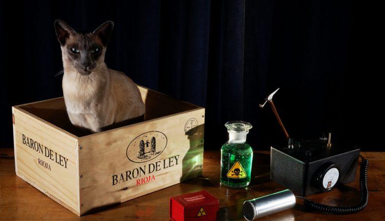 O Gato de Schrödinger, que está vivo e morto enquanto está dentro da caixa, é um dos paradigmas da Mecânica Quântica