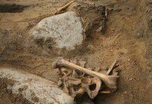 Ossos encontrados na Escócia podem ser de pirata do Século XVI.