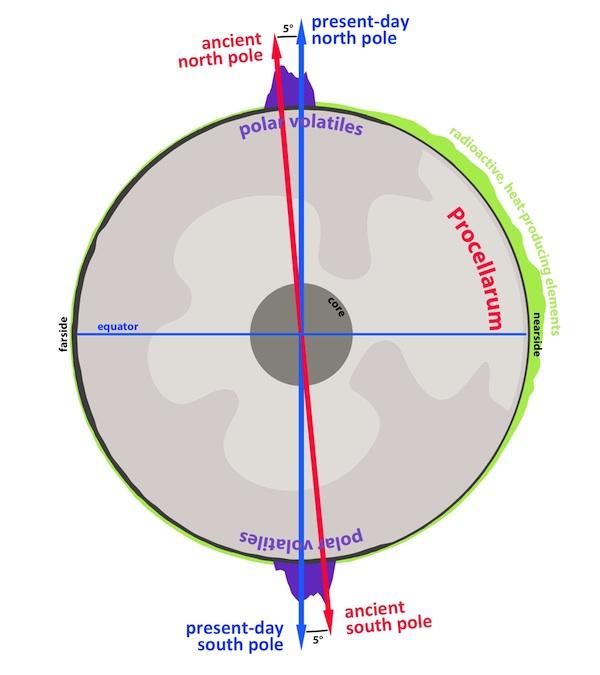 Uma secção cruzada que atravessa a Lua, realçando a natureza antipodal dos voláteis polares da Lua (púrpura). A reorientação desse antigo polo (seta vermelha) até ao polo atual (seta azul) foi alimentada pela formação e evolução da região Procellarum - uma região no lado visível da Lua associada com uma alta abundância de calor radioativo que produz elementos (verde), um alto fluxo de calor e antiga atividade vulcânica.