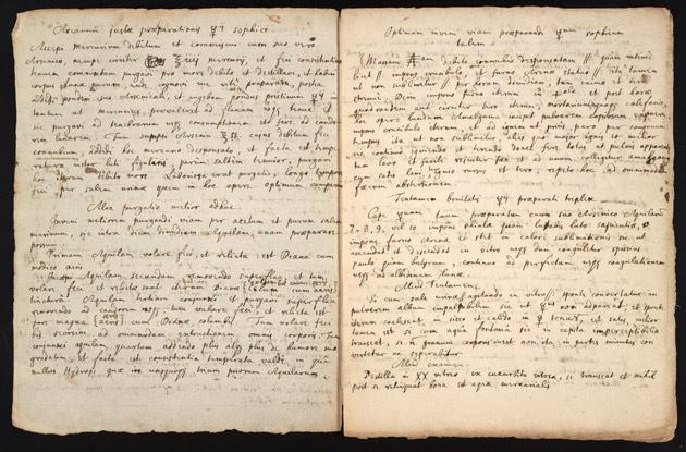 O documento contém excertos copiados de textos de outro alquimista, assim como descrições de experiências feitas pelo próprio Newton