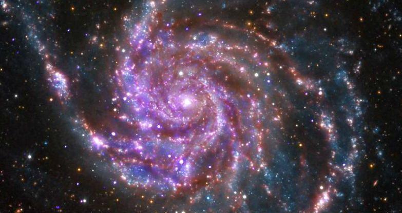 M101, uma das faláxias observadas no estudo
