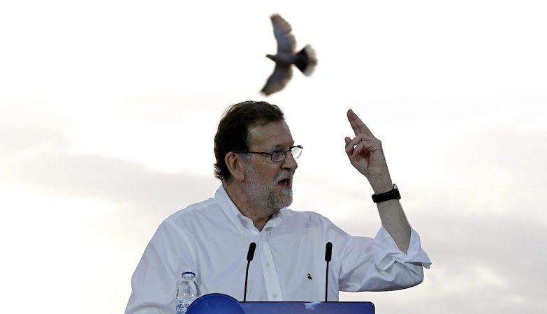 Mariano Rajoy, primeiro-ministro e líder do Partido Popular espanhol