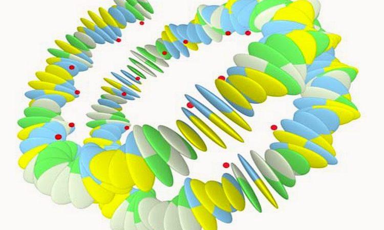 """A forma como a cadeia de DNA se dobra determina quais os genes que estão """"acessíveis"""" para produzir as proteínas"""