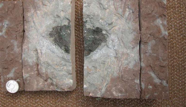 Oest 65: este poderá ser o primeiro caso documentado de um meteorito extinto - isto é, cujo corpo principal já não passa pela Terra por ter sido consumido em sucessivas colisões