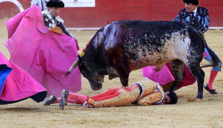 Victor Barrio, no solo, depois de ter sido violentamente atingido pelo touro que lidava
