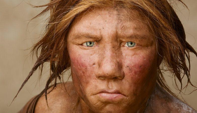 Wilma, uma fêmea reconstituída a partir de DNA neanderthal, era ruiva, de olhos claros, pálida e tinha sardas - como quase todos os neanderthals