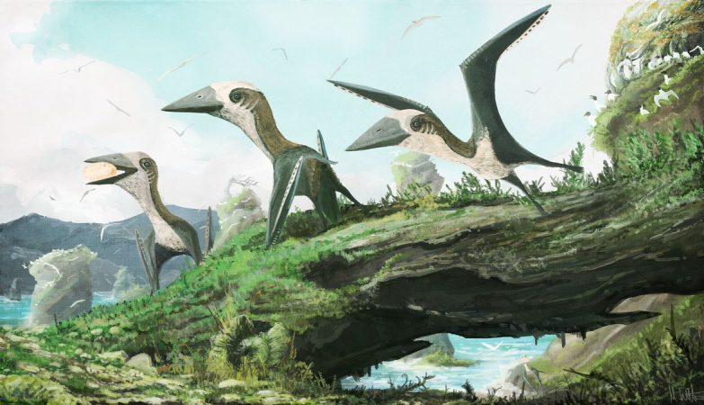 Ilustração de pterossauros do período Cretáceo