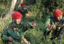 Morreu militar dos Comandos que esperava por um transplante - ZAP 6b3ffd879d5