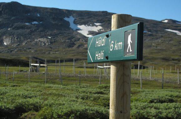 Halti é o ponto mais alto da Finlândia com 1.324 metros, mas o pico da montanha, a 1.361 metros, está do lado norueguês.