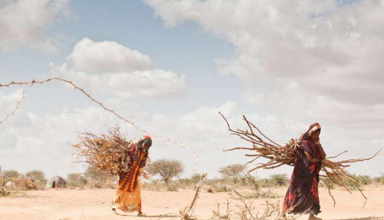 As alterações climáticas provocam seca em África e deslocalização das populações