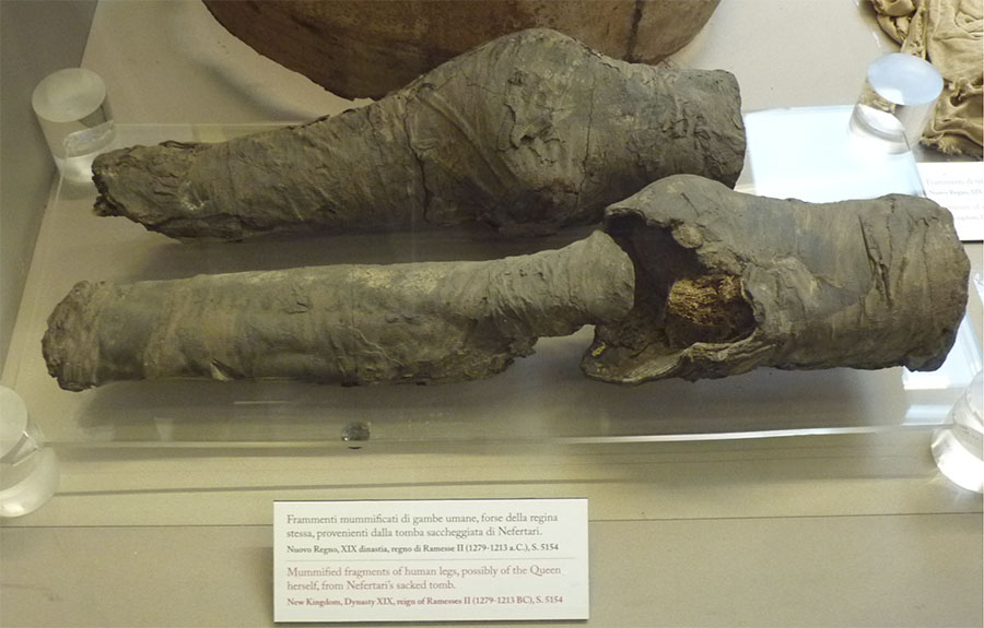 Joelhos mumificados da Rainha Nefertari no Museu Egípcio, em Turim, Itália.