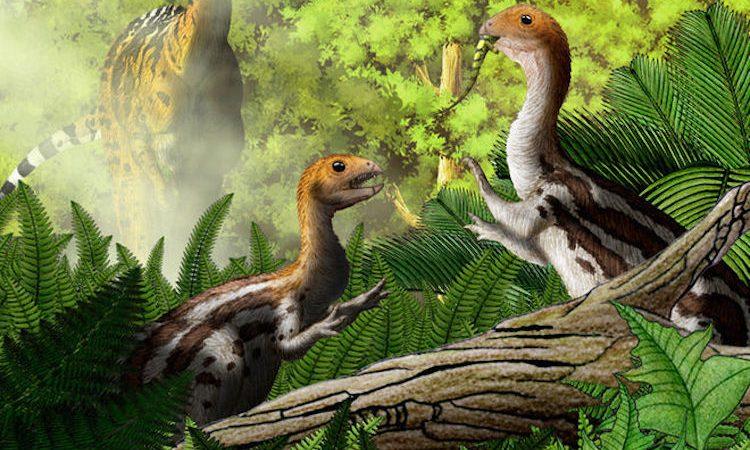 Limusaurus inextricabilis