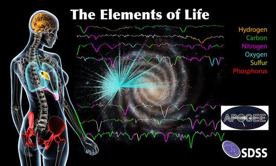Os seis elementos mais comuns da vida na Terra (carbono, hidrogénio, nitrogénio, oxigénio, enxofre e fósforo) são também os mais abundantes no centro de nossa galáxia